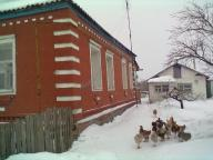 Дом, Введенка, Харьковская область (437886 1)