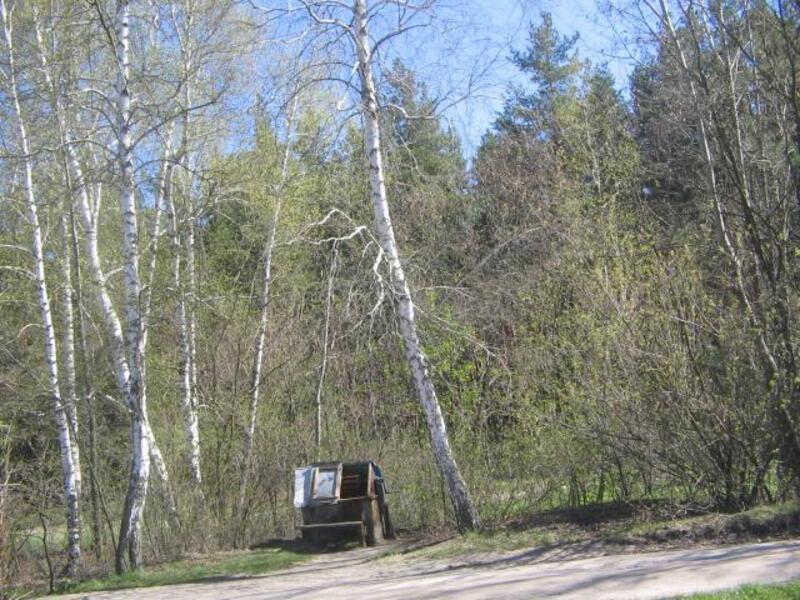 Дом, Высокий, Харьковская область (439403 5)