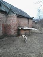 Дом, Стрелечья, Харьковская область (442732 10)