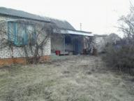 Дом, Циркуны, Харьковская область (445871 3)