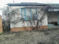 Дом, Циркуны, Харьковская область (445871 4)