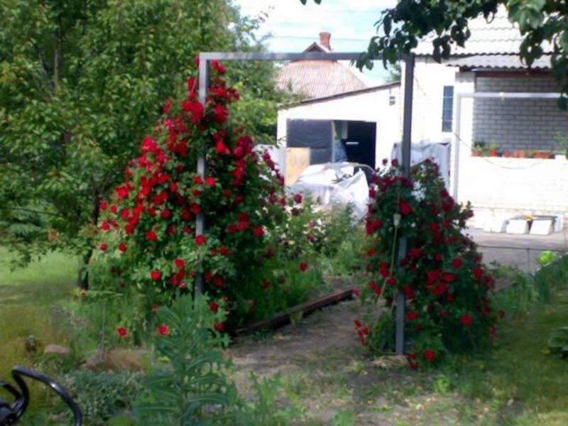 Дом, Песочин, Харьковская область (449252 1)