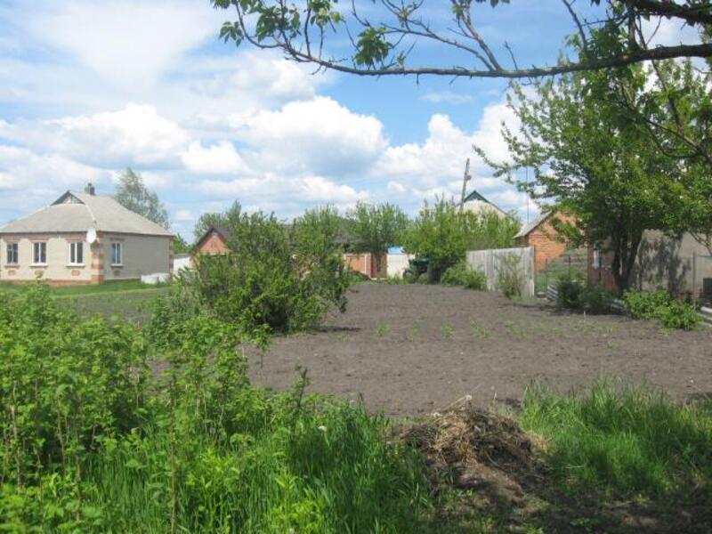 дом, Должик, Харьковская область (452361 5)
