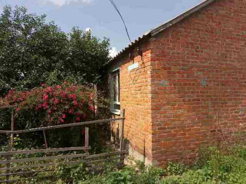 Дом, Коробочкино, Харьковская область (456044 1)