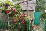 Дом, Липцы, Харьковская область (456537 5)