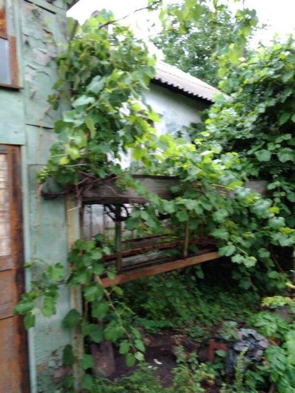 Дом, Липцы, Харьковская область (457165 1)