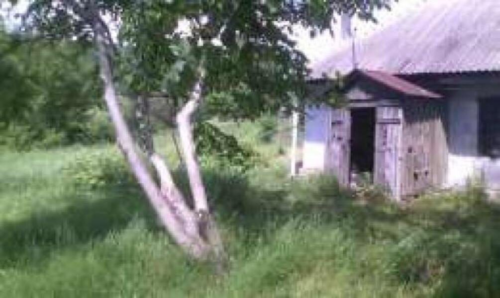 дом, Цуповка, Харьковская область (460945 1)