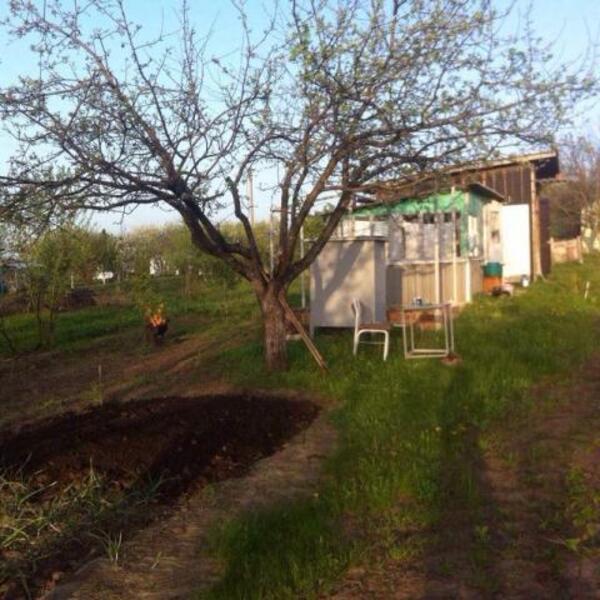 Дом, Беспаловка, Харьковская область (462767 3)