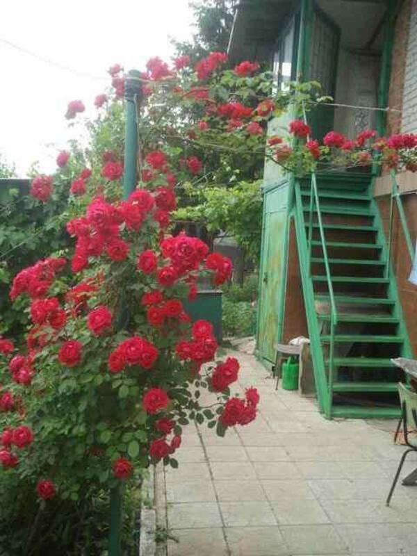 Дом, Мерефа, Харьковская область (467891 2)