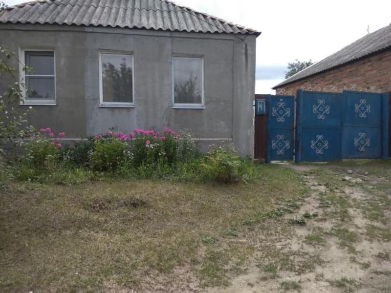 Дом, Березовка, Харьковская область (468755 5)