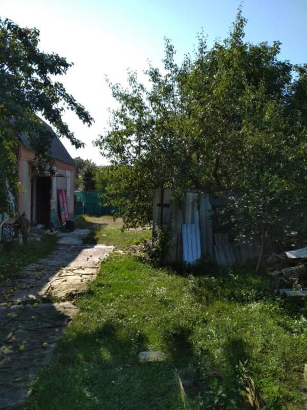 Дом, Высокий, Харьковская область (478111 3)