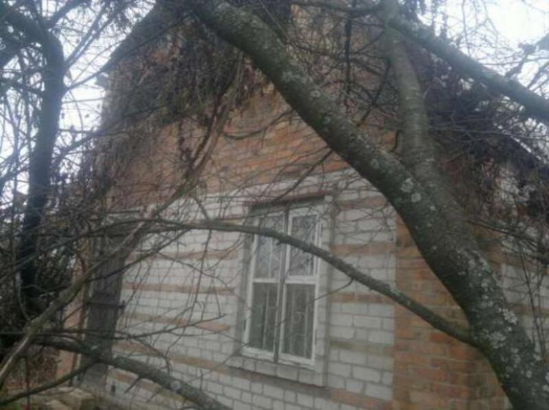 дом, Золочев, Харьковская область (478204 3)