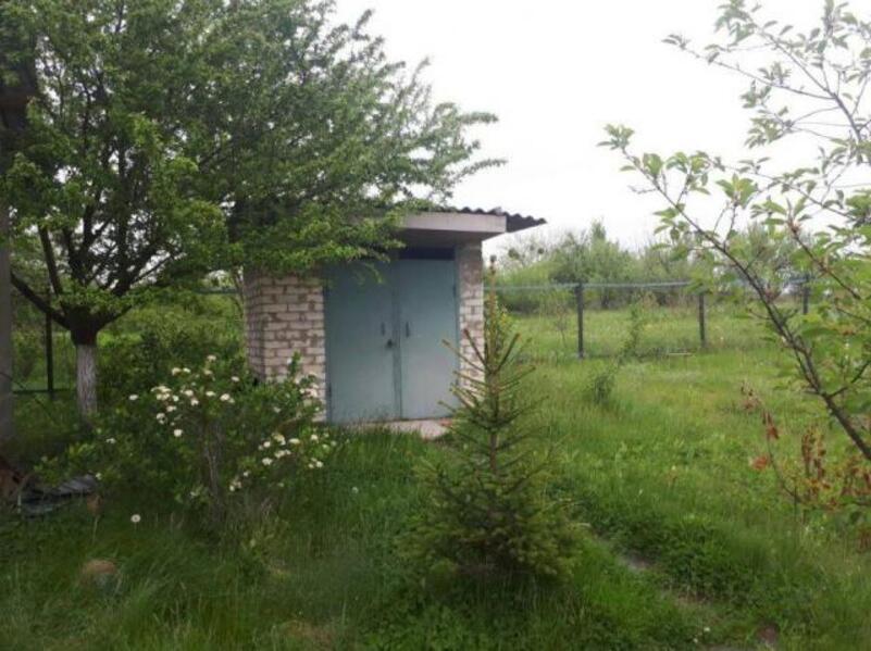 Дом, Ольшаны, Харьковская область (478490 6)