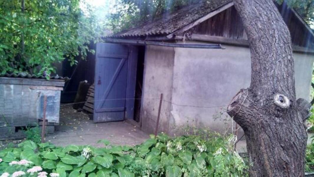 дом, Чугуев, Харьковская область (479074 4)