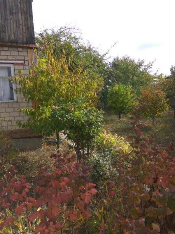Дом, Новопокровка, Харьковская область (483156 4)