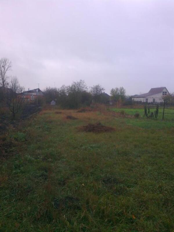 Дом, Солоницевка, Харьковская область (487093 10)