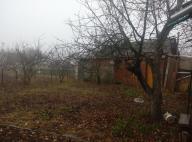 Дом, Высокий, Харьковская область (492664 5)
