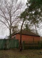 Дом, Золочев, Харьковская область (502429 4)
