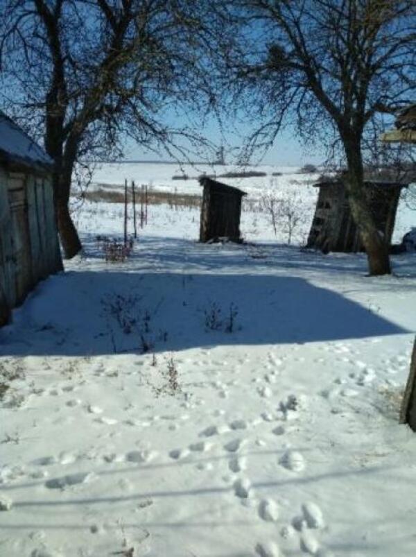 Дом, Ватутино, Харьковская область (506188 4)