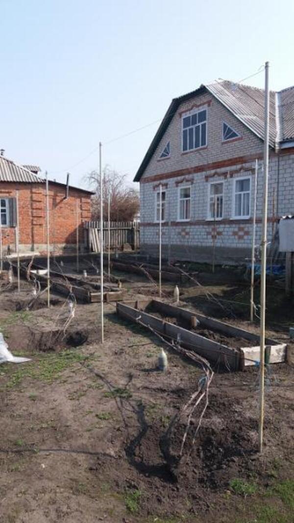 Дом, Мерефа, Харьковская область (512999 1)