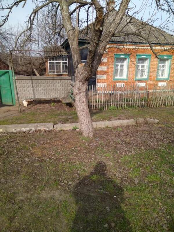 Дом, Новопокровка, Харьковская область (514578 1)