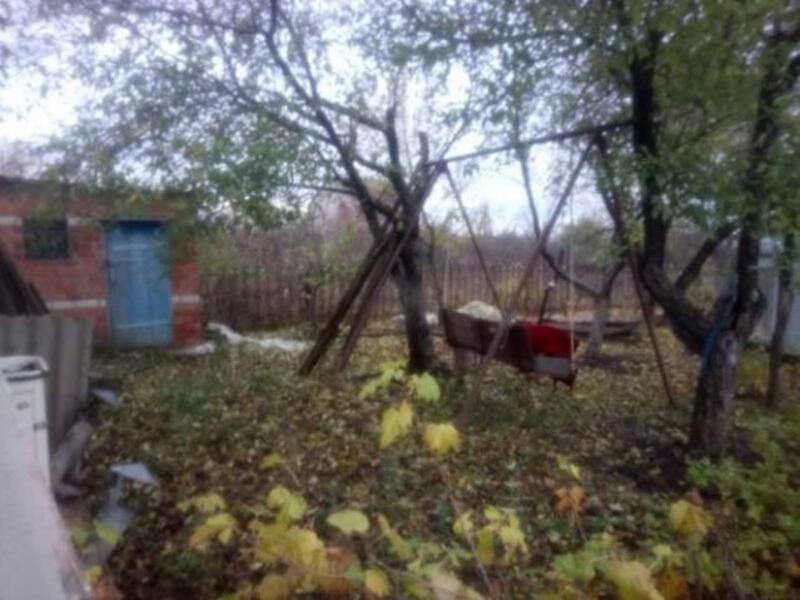 Дача, Борщевая, Харьковская область (515304 1)