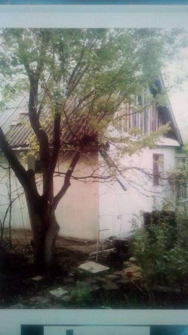 Дача, Липцы, Харьковская область (519308 1)