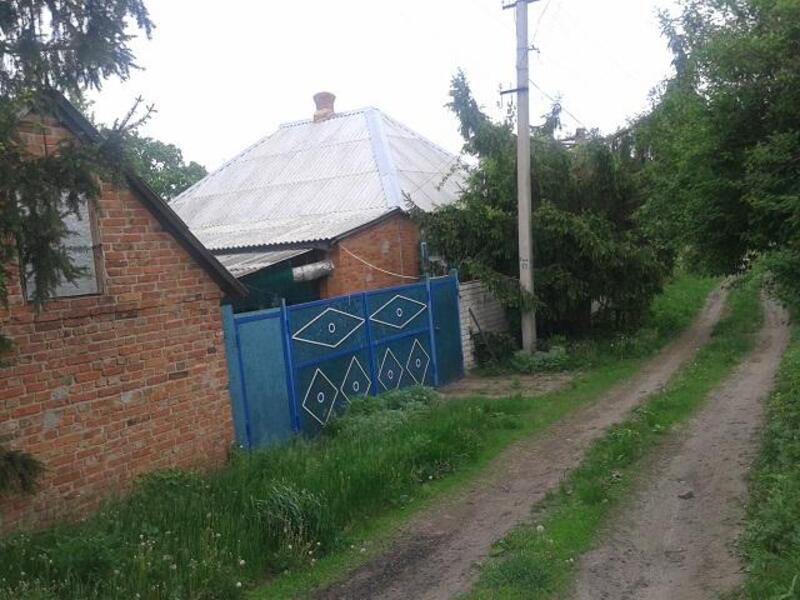 Дом, Безруки, Харьковская область (519469 1)