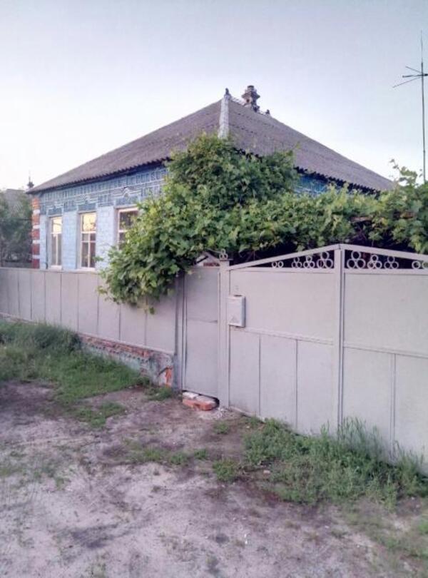 Дом, Введенка, Харьковская область (521477 1)