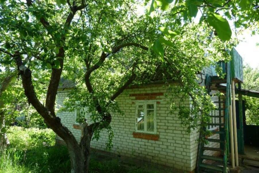 Дача, Солоницевка, Харьковская область (521593 1)