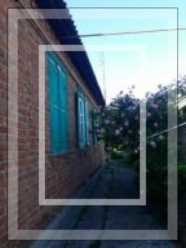 Дом, Терновая, Харьковская область (521921 6)