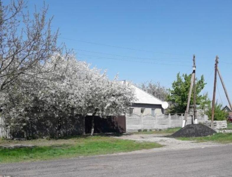 Дом, Боровая, Харьковская область (523247 1)
