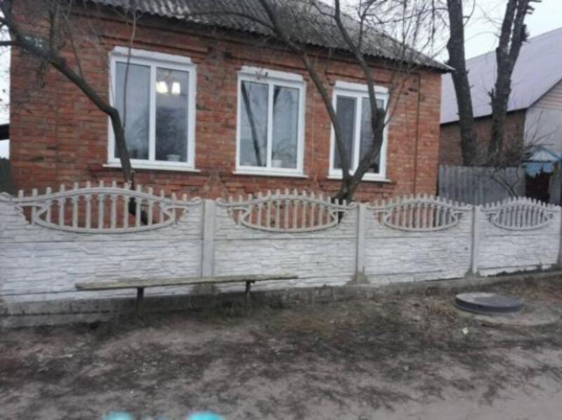 Дом, Ольшаны, Харьковская область (524229 1)