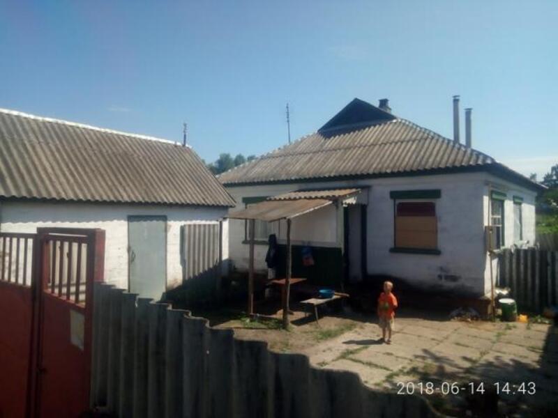 Дом, Пролетарское, Харьковская область (525670 1)