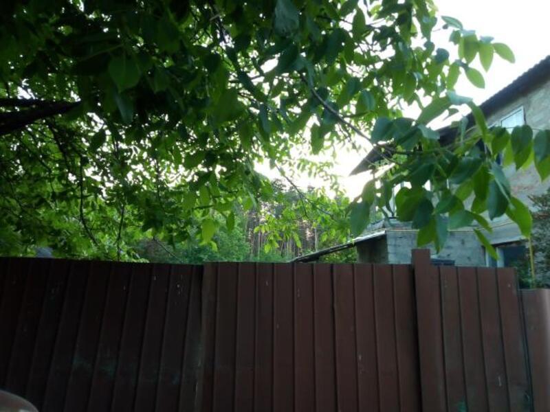 Дом, Черкасские Тишки, Харьковская область (526621 1)
