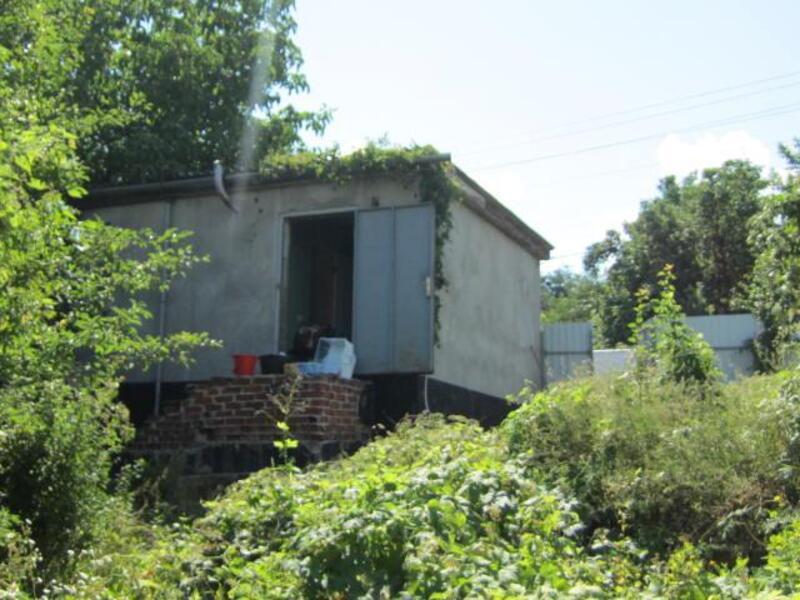 Дом, Борки, Харьковская область (531762 1)