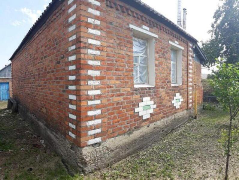 Дом, Борки, Харьковская область (532918 1)
