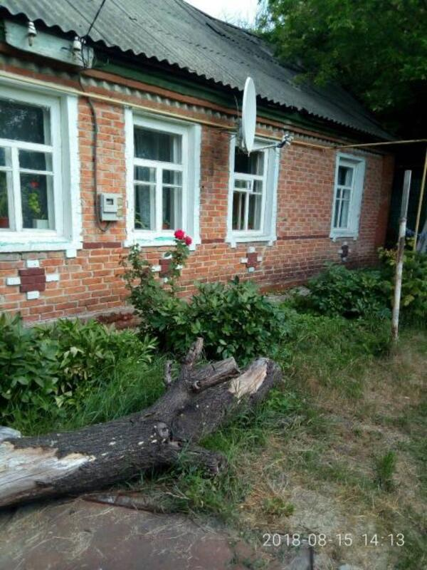Дом, Терновая, Харьковская область (536728 1)