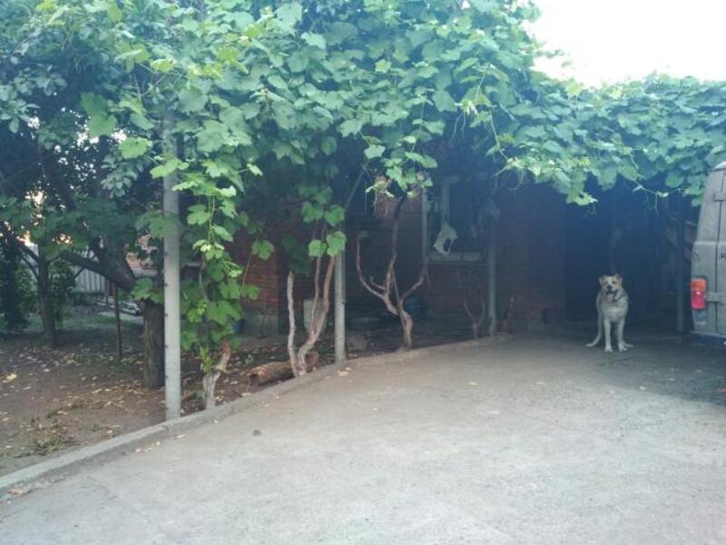 Дом, Чугуев, Харьковская область (537326 1)