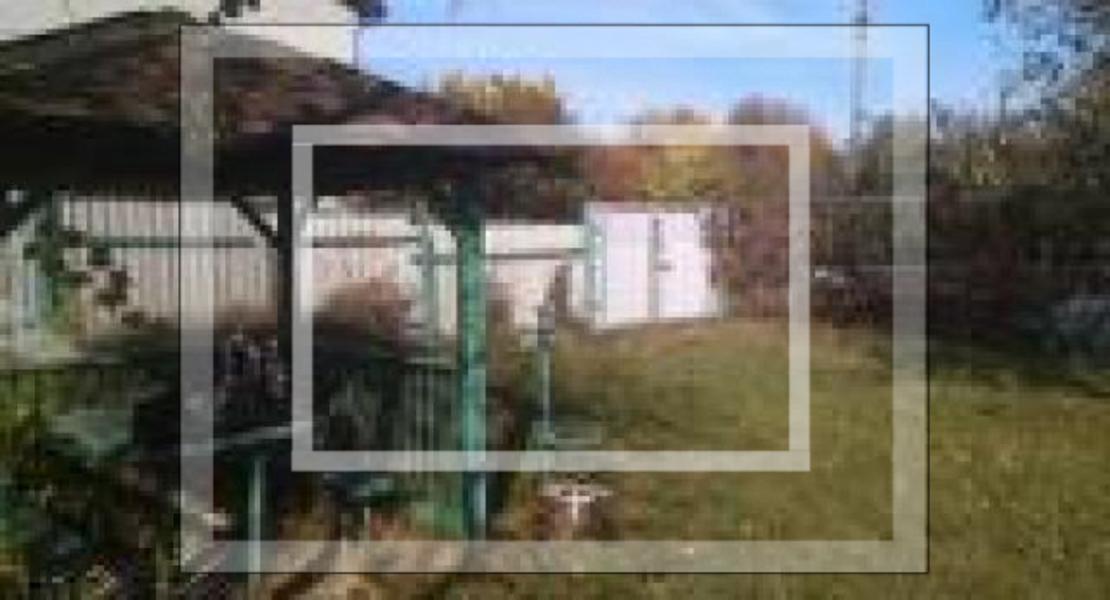 Дом, Буды, Харьковская область (548407 6)