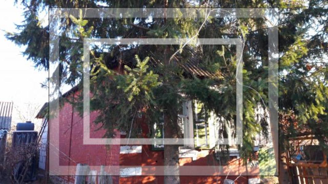 Дом, Казачья Лопань, Харьковская область (554646 1)