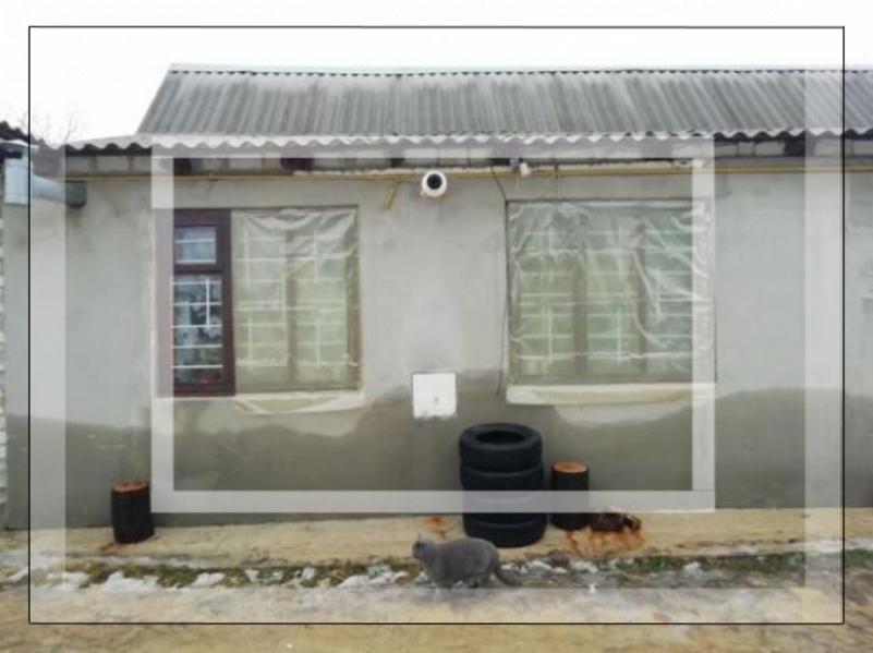 Дом, Безлюдовка, Харьковская область (559242 4)