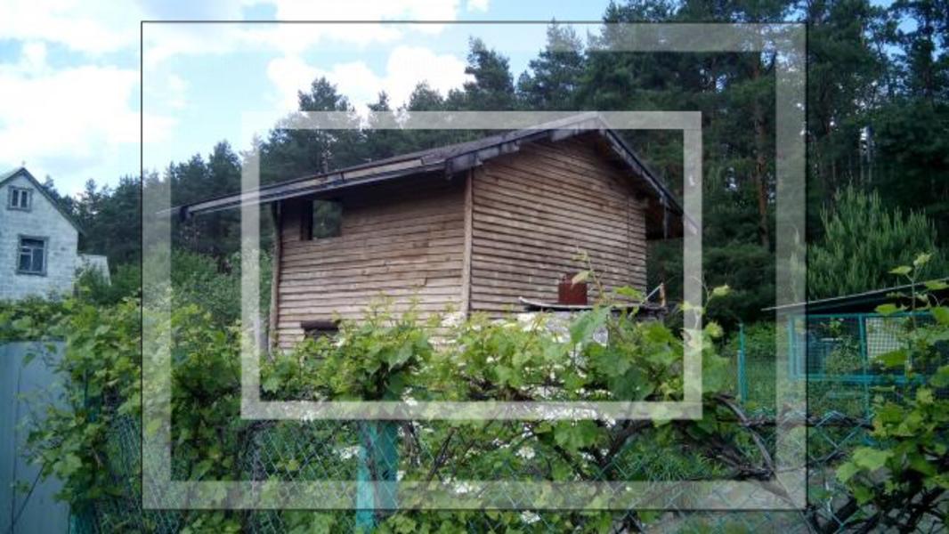 Дом, Новая Водолага, Харьковская область (562941 1)