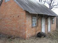 Дом, Тарановка, Харьковская область (57196 2)