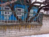 Дом, Чкаловское, Харьковская область (580579 1)