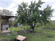 Дача, Кутузовка, Харьковская область