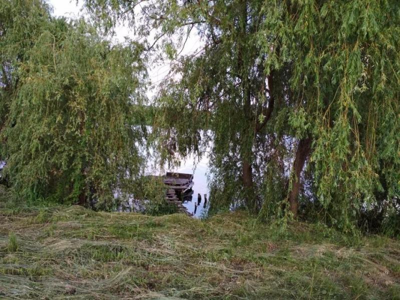 Купить Дом, Ольховка, Харьковская область