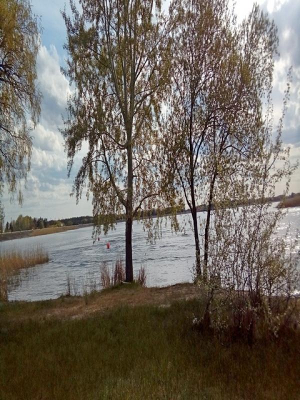 Купить Дача, Печенеги, Харьковская область