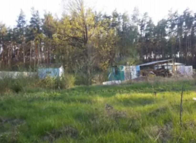 Купить Дача, Васищево, Харьковская область