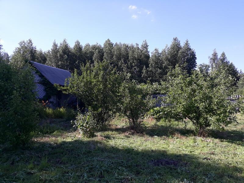 Дача, 1-комн., Артюховка, Змиевской район